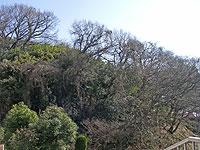 南区永田北の分割開発地の写真その1