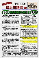 こんにちは横浜市議団です 1223