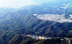 池子の森。写真中央左付近が横浜市域の住宅建設予定地(大貫憲夫議員撮影)