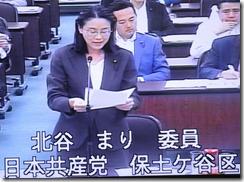 文化観光局審査で質問する北谷まり議員