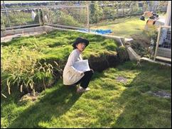 断層によって隆起した庭